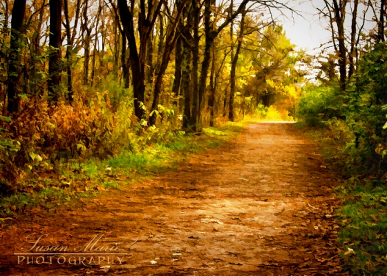 Painted Path