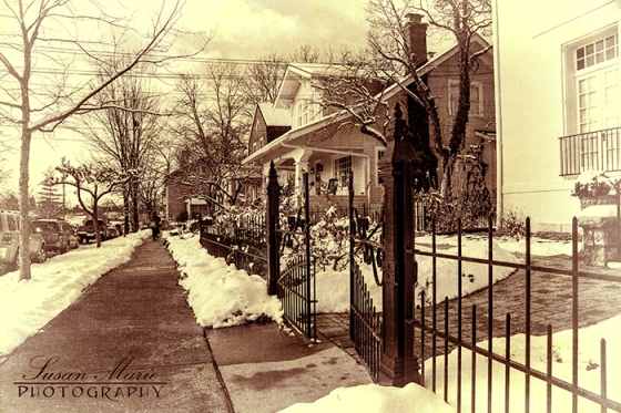Iron Fence and Snow