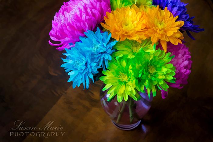 neon flowers sassy susan creates