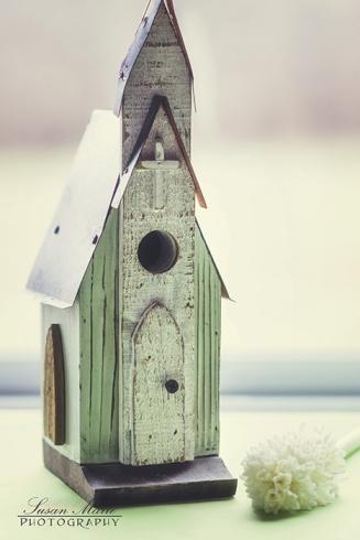 Birdhouse Chapel