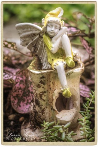 Richard Fox's Garden_20140803_064